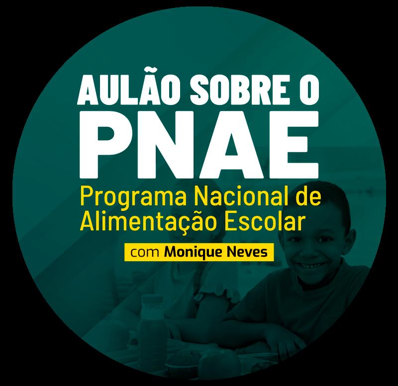aulao-sobre-o-pnae-programa-nacional-de-alimentacao-escolar-1600094847.png